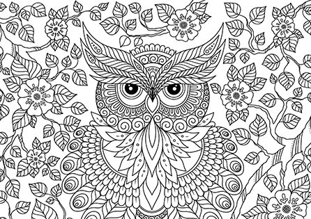 Essential coloring pattern